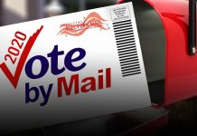 Texas Supreme Court prevents vote by mail due to lack of immunity
