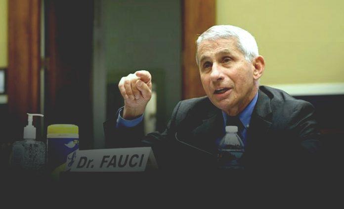 Fauci warns against early authorization of Coronavirus vaccine