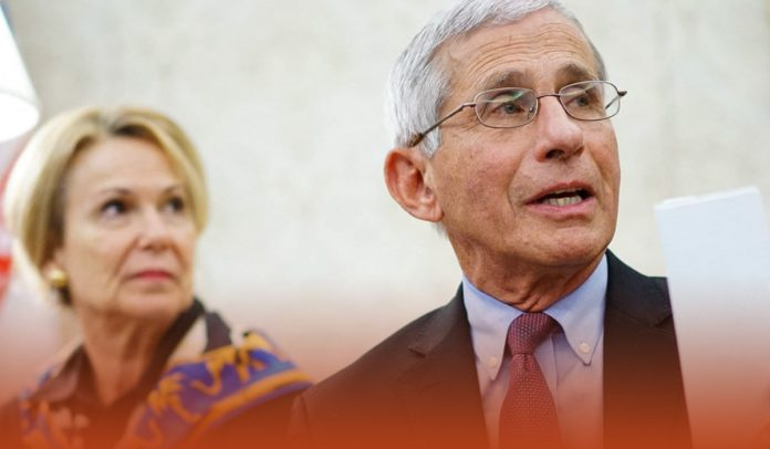 Dr. Anthony Fauci says in TV Appearance,